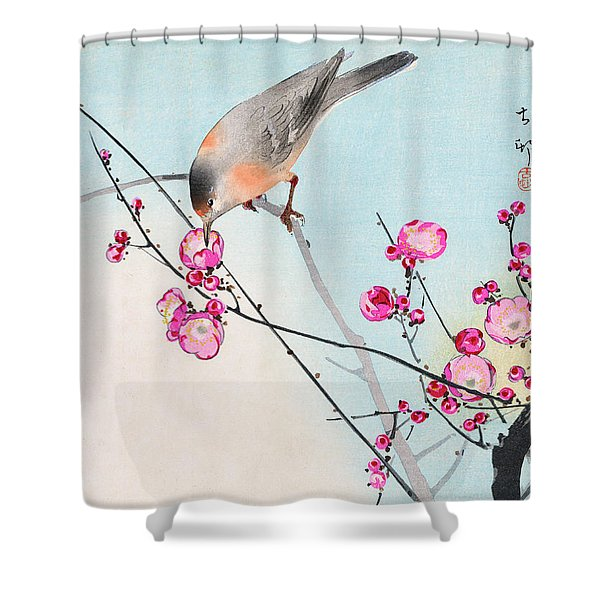 Nightingale Shower Curtain