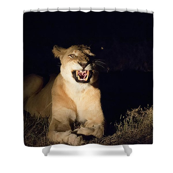 Nightmare Lioness Shower Curtain