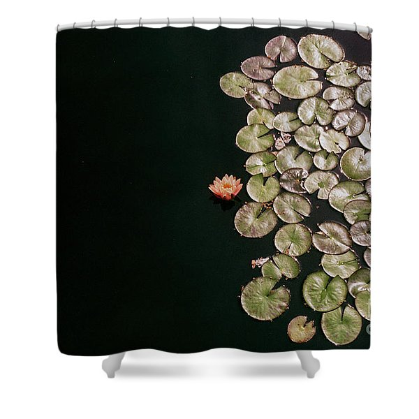 No Mud No Lotus Shower Curtain