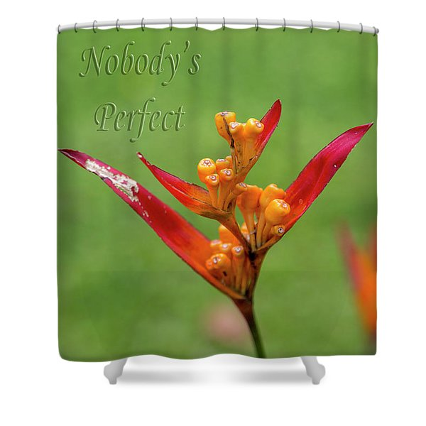 Nobody's Perfect Shower Curtain
