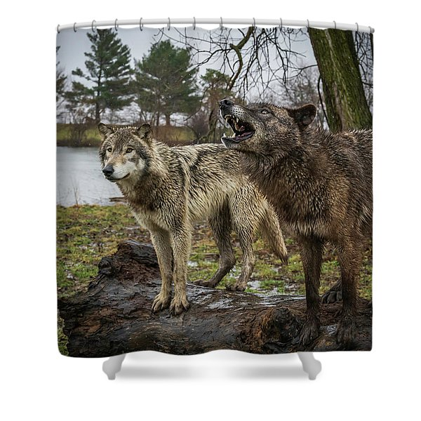 Noisy Wolf Shower Curtain