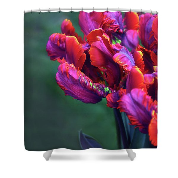 Rococo In Red Shower Curtain