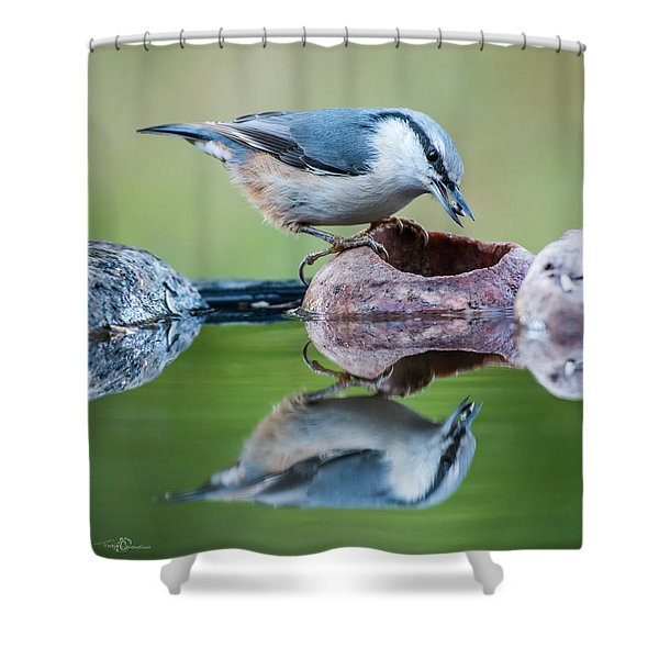 Nuthatch's Catch Shower Curtain