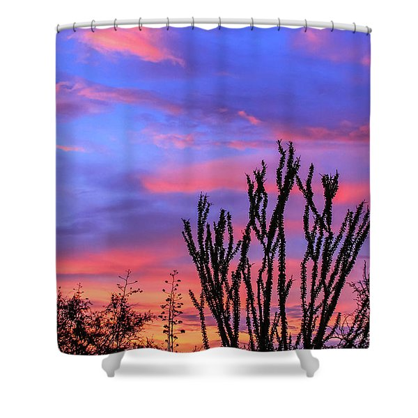 Shower Curtain featuring the photograph Ocotillo Sunset 1 by Dawn Richards