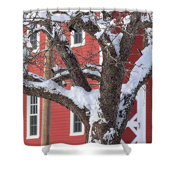 Old Apple Tree Red Barn Winter In New Hampshire Shower Curtain
