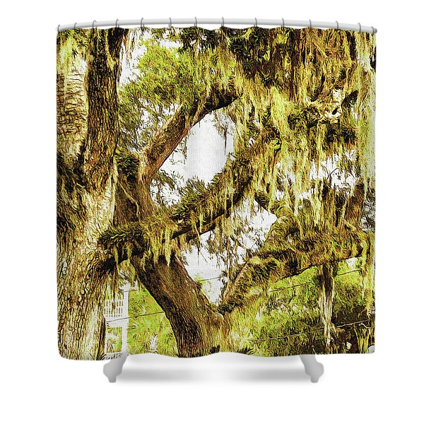 Old Mossy Oaks Shower Curtain