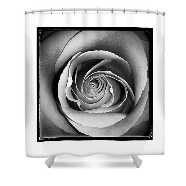 Old Rose Shower Curtain