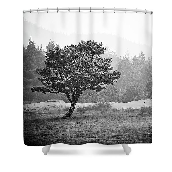Shower Curtain featuring the photograph On My Own by Whitney Goodey