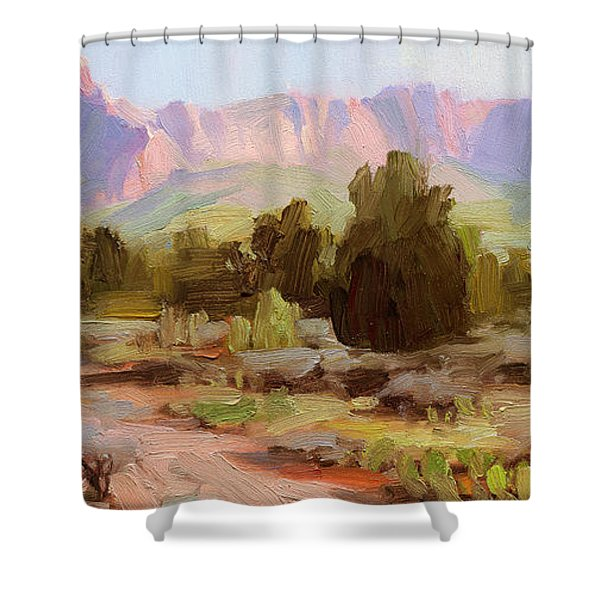On The Chinle Trail Shower Curtain