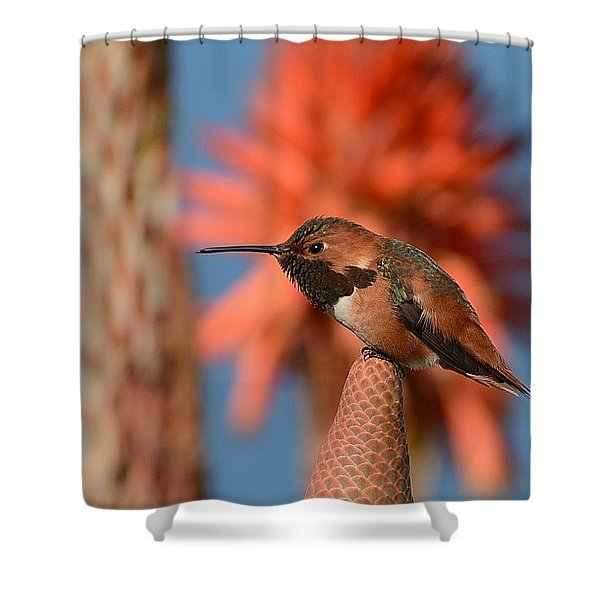 On Top Of Aloe Shower Curtain