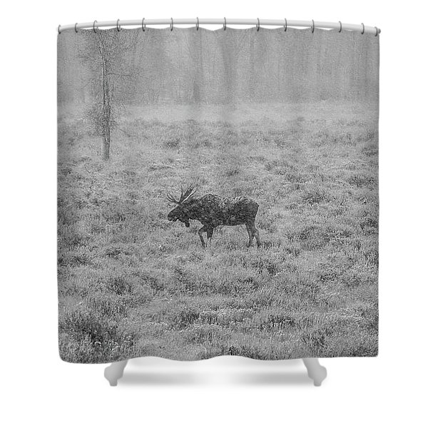 Onset  Shower Curtain