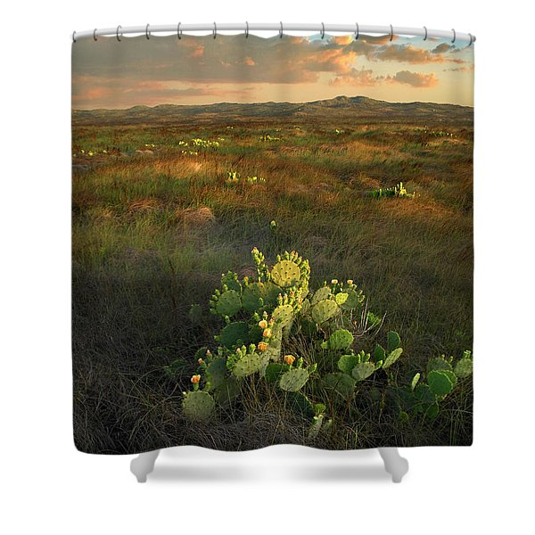 Opuntia, Mustang Island State Park Shower Curtain