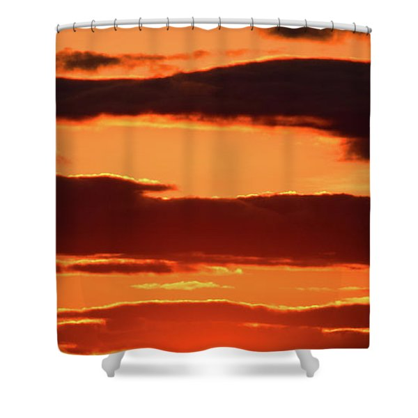 Shower Curtain featuring the photograph Orange And Black by William Selander