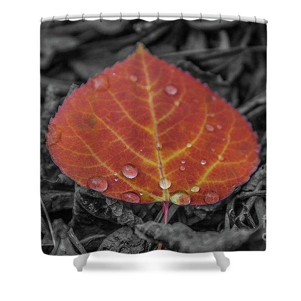 Orange Aspen Leaf Shower Curtain