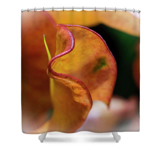 Orange Croton Shower Curtain
