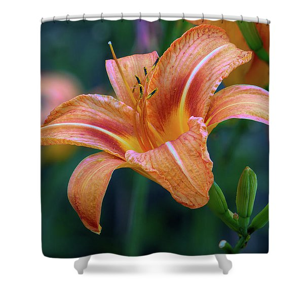 Orange Lily Detailed Petals Shower Curtain