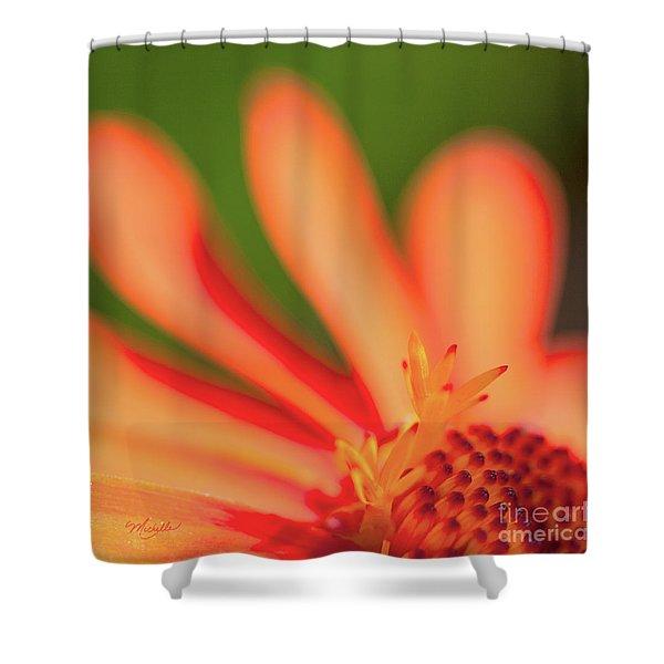 Orange Sunshine Shower Curtain