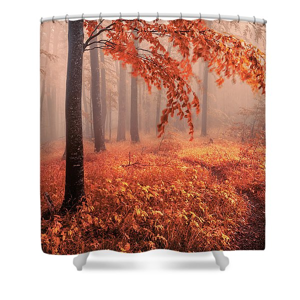 Orange Wood Shower Curtain