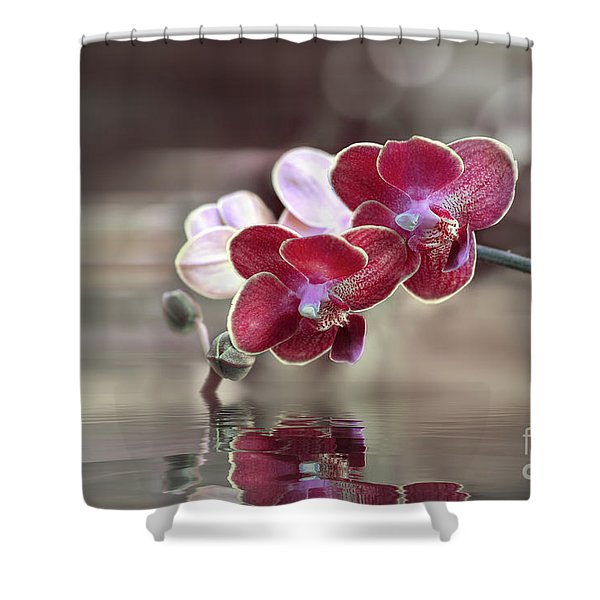Orchid Reflection Shower Curtain