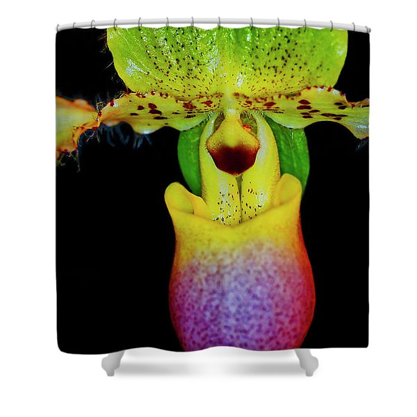 Shower Curtain featuring the photograph Orchid Study Eleven by Meta Gatschenberger