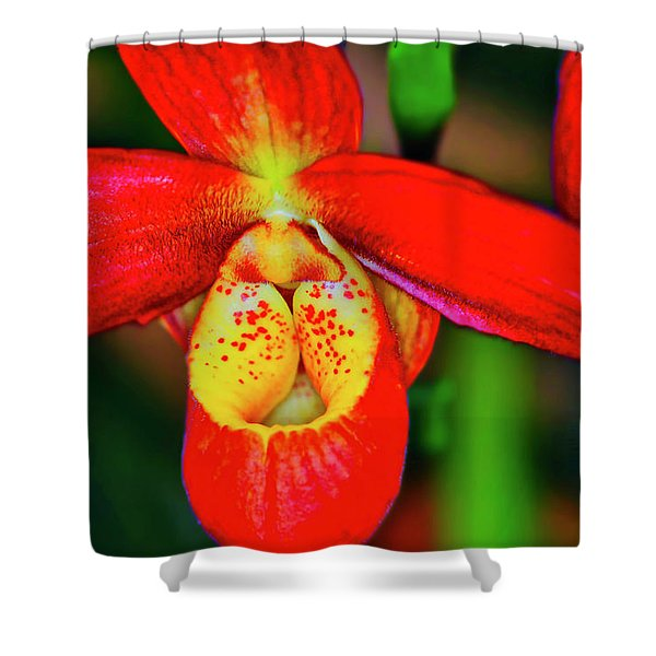 Shower Curtain featuring the photograph Orchid Study Seven by Meta Gatschenberger