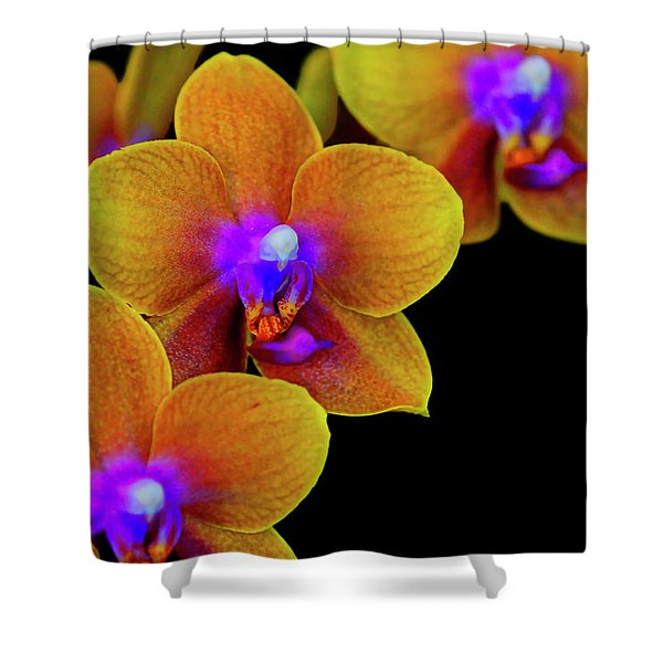 Shower Curtain featuring the photograph Orchid Study Ten by Meta Gatschenberger