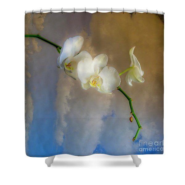 Orchid With Clouds Shower Curtain