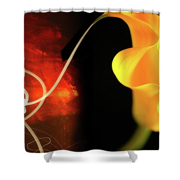 Origins Shower Curtain
