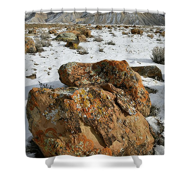 Ornate Colorful Boulders In The Book Cliffs Shower Curtain