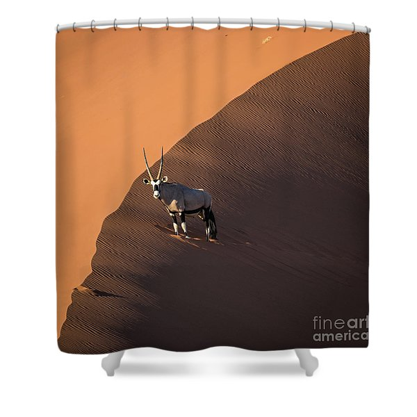 Oryx On The Edge, Namibia Shower Curtain