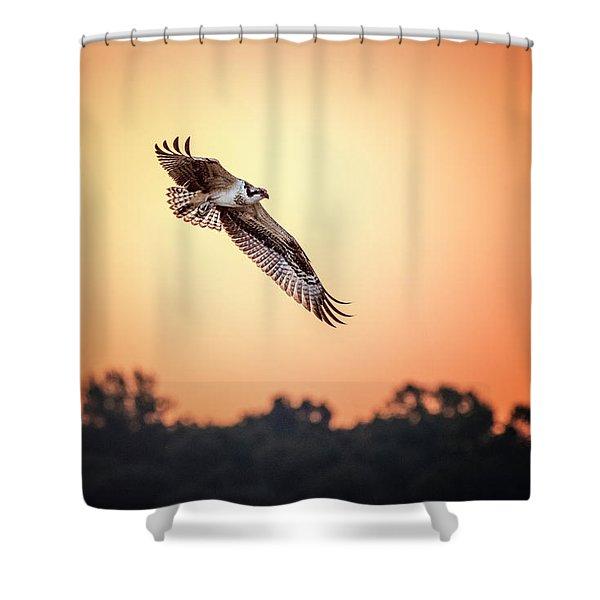 Osprey At Sunrise Shower Curtain