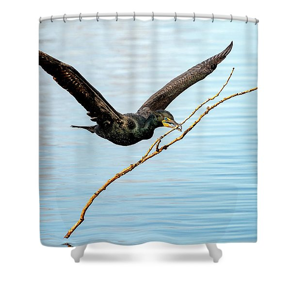 Over-achieving Cormorant Shower Curtain