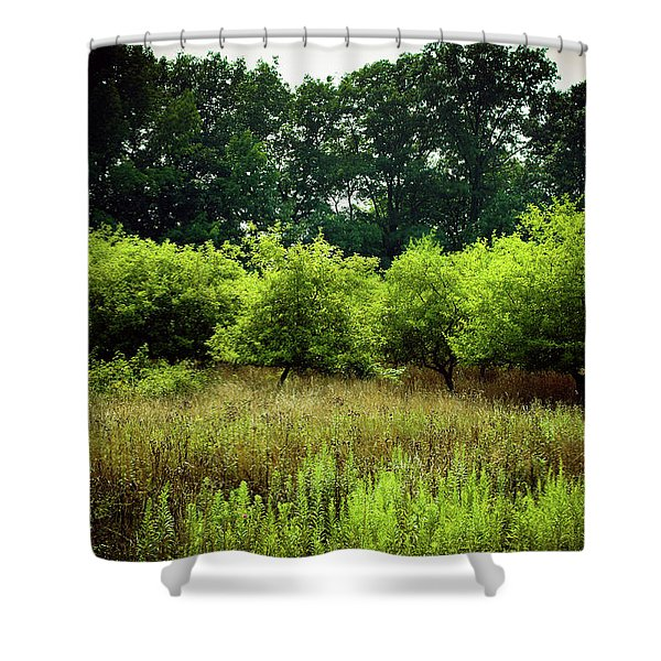 Shower Curtain featuring the photograph Overgrown by Michelle Wermuth