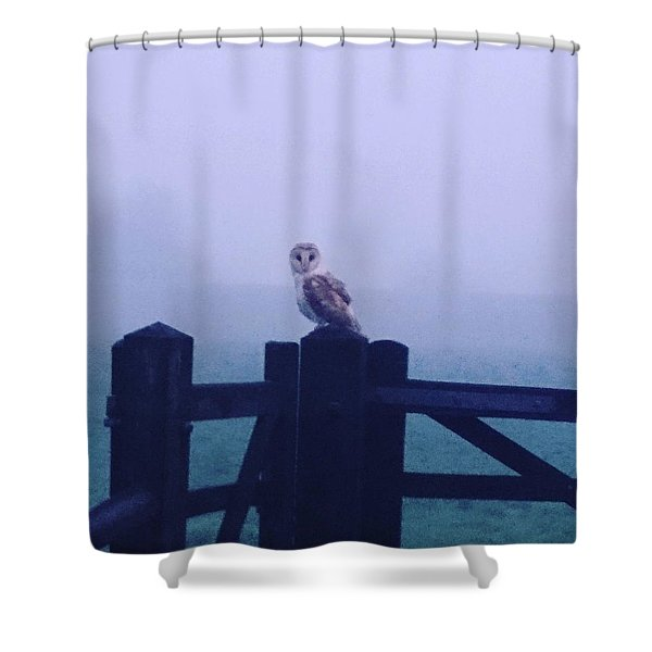 Owl In The Mist Shower Curtain