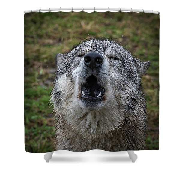 Owwwwwwwwwww Shower Curtain
