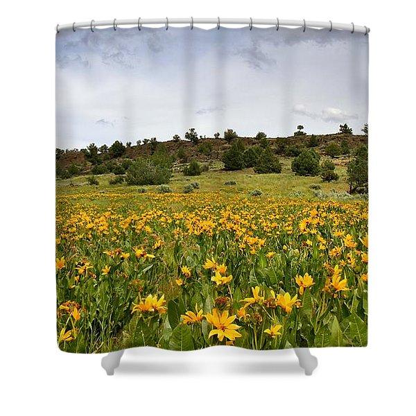 Owyhee Uplands Shower Curtain