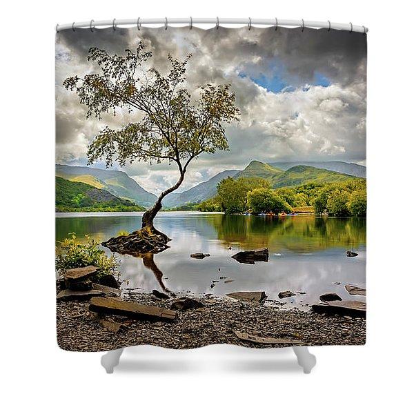 Padarn Lake Tree  Shower Curtain