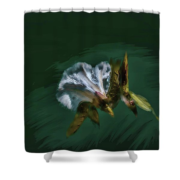 Painted Bindweed #i2 Shower Curtain