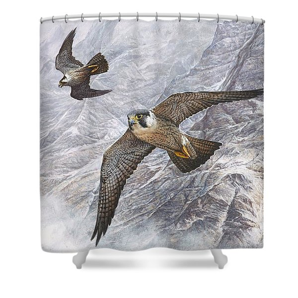 Shower Curtain featuring the painting Pair Of Peregrine Falcons In Flight by Alan M Hunt