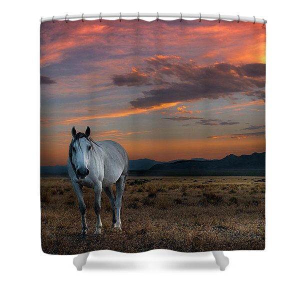 Pale Horse Shower Curtain