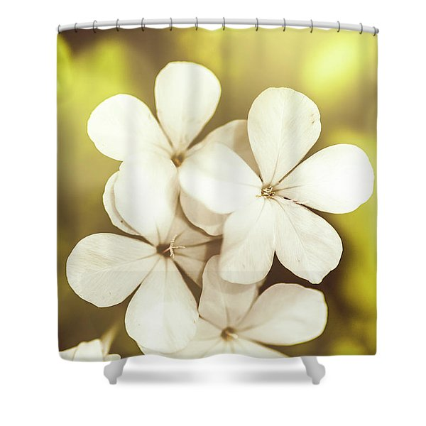 Pale Wildflowers Shower Curtain