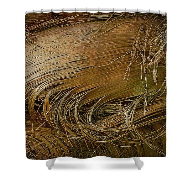 Palm Tree Straw Shower Curtain