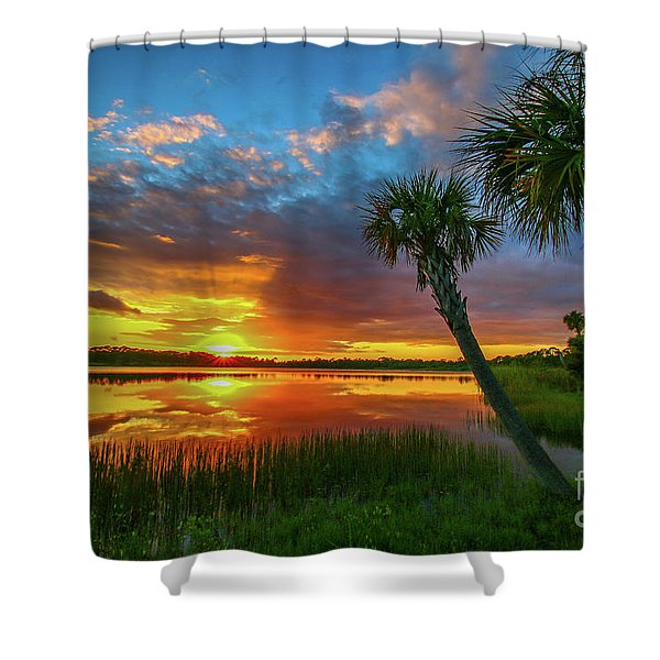 Shower Curtain featuring the photograph Palm Tree Sunset by Tom Claud