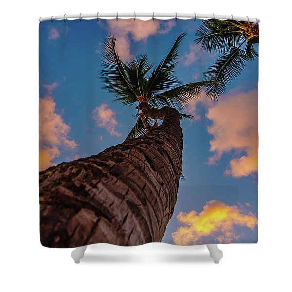 Palm Upward Shower Curtain