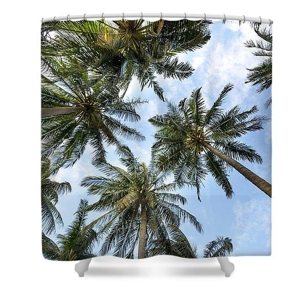 Palms  Beach Shower Curtain