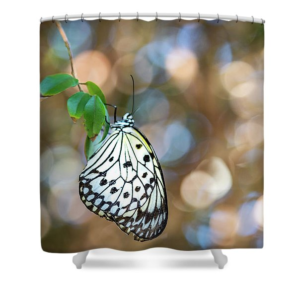 Paper White Rest Shower Curtain
