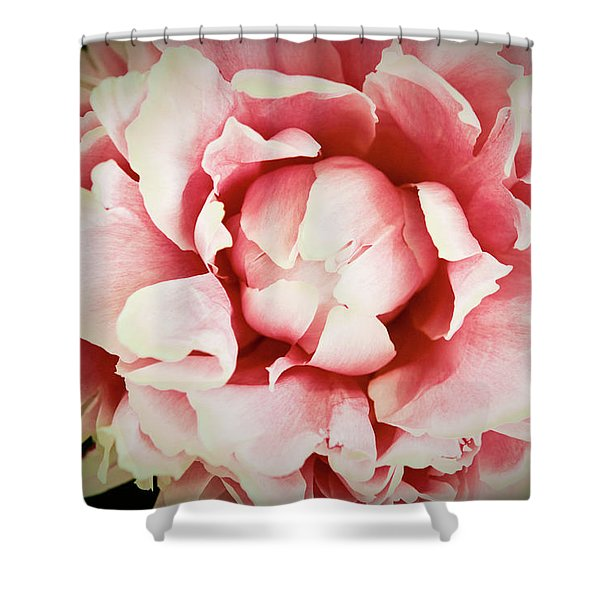 Shower Curtain featuring the photograph Peach Peony by Emily Johnson