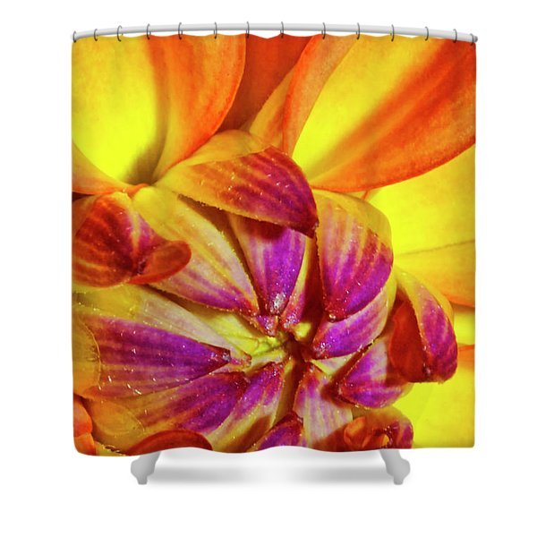 Peach Purple Flower Shower Curtain
