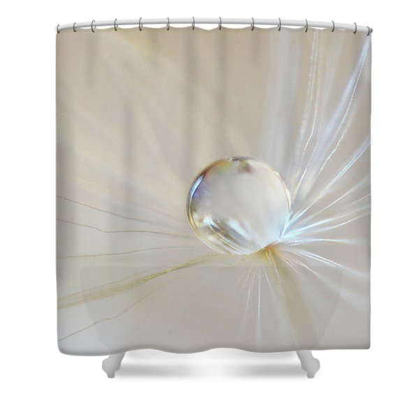 Shower Curtain featuring the photograph Pearl by Michelle Wermuth