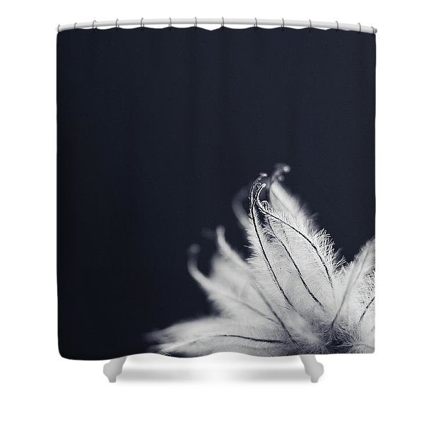Shower Curtain featuring the photograph Peek by Michelle Wermuth